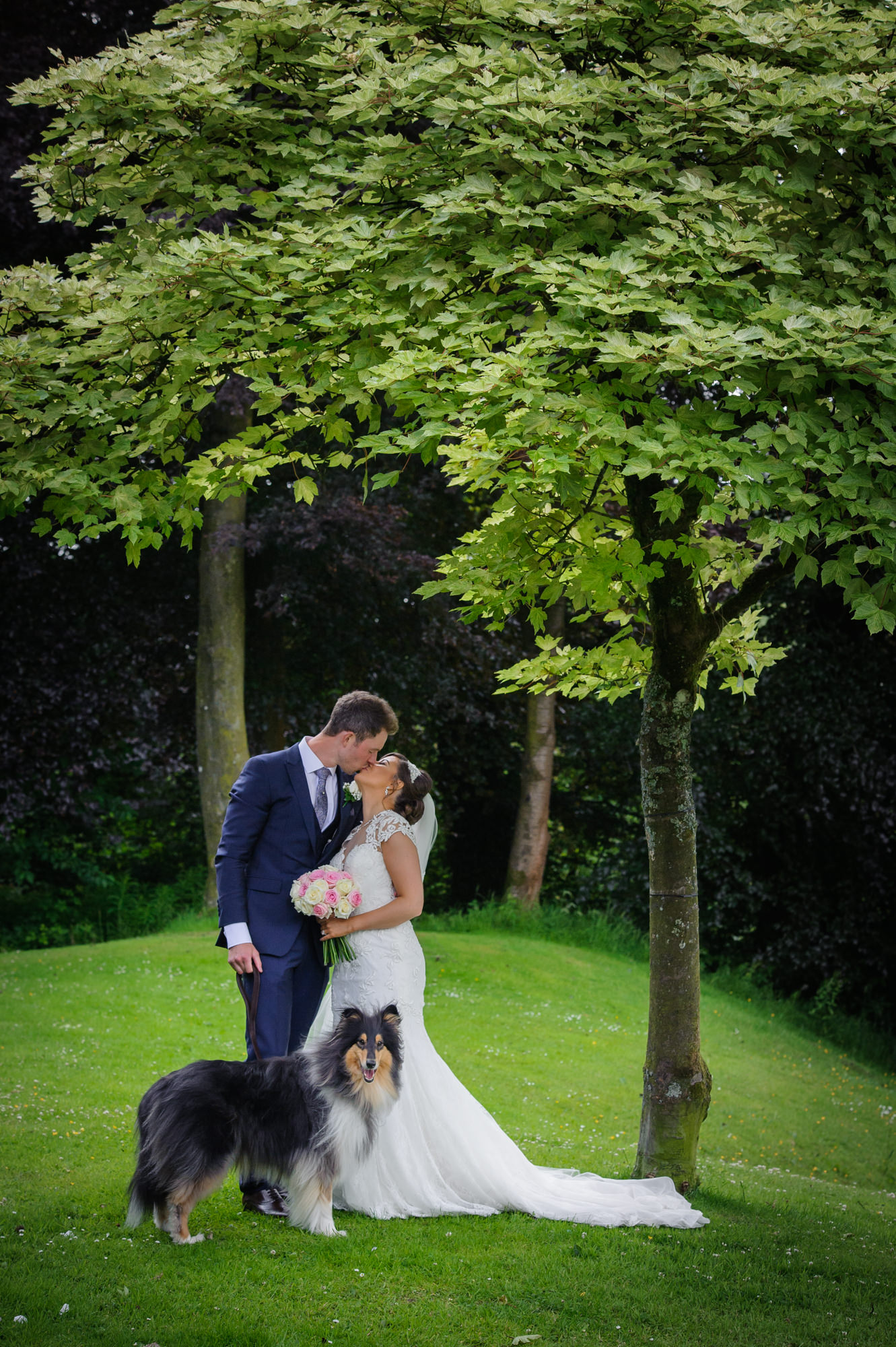 Bride and groom with their dog at The inn at Whitewell