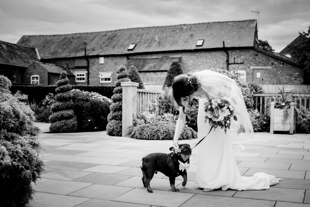 Bride stroking the dog